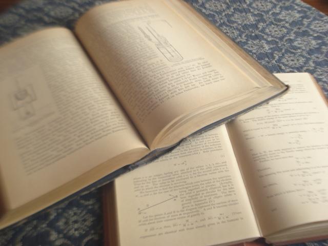 若者が読書をしないのは、読書の価値が社会的に位置づけられていないから