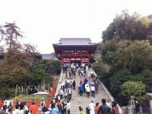 記憶の糸-鶴岡八幡宮1