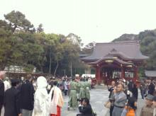 記憶の糸-鶴岡八幡宮3
